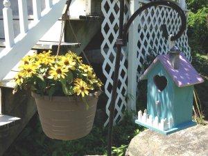 zinnias_and_birdhouse